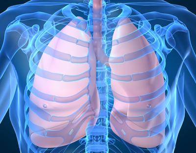 呼吸器疾患について
